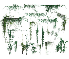 3D corner and straight vines isolated
