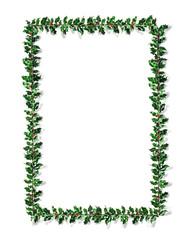 holly leaves frame