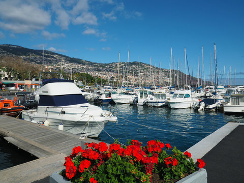 Madeira - Yachthafen in Funchal