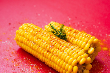 Yellow sweet corn with spices on red background. Minimal food concept.