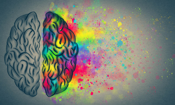 The Creative Brain, left and right human brain concept