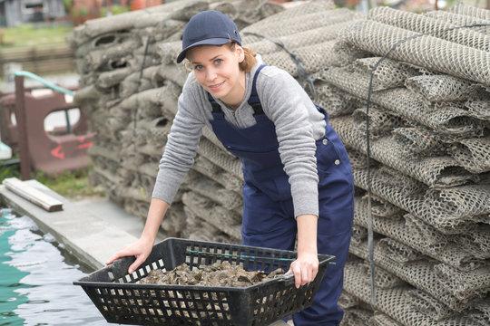 oyter farm and femele worker