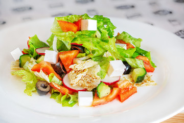 Vegetable and cheese salad on a white plate