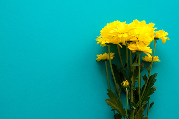 Beautiful bouquet of chamomile on turquoise background with copy space