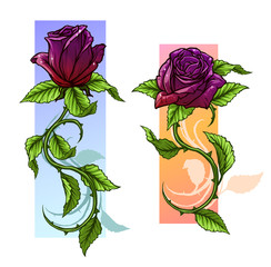 Graphic detailed cartoon violet and red roses flower with stem and leaves. On white background. Vector icon set.