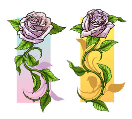 Graphic detailed cartoon light pink roses flower with stem and leaves. On white background. Vector icon set.