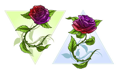 Graphic detailed cartoon violet roses flower with stem and leaves. On white background. Vector icon set.