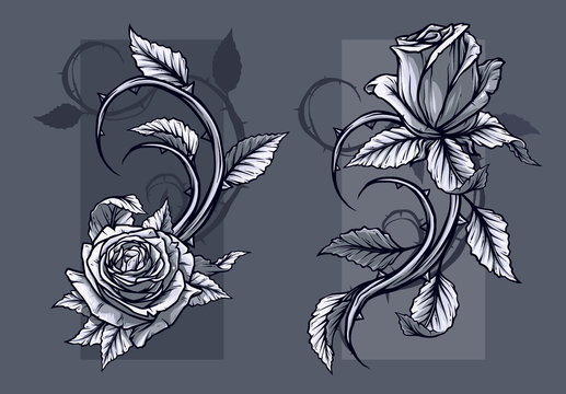 Graphic detailed graphic black and white roses flower with stem and leaves. On gray background. Vector icon set. Vol. 9