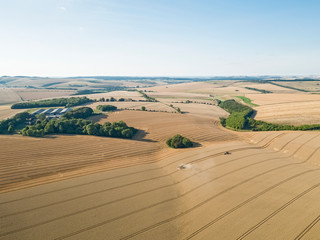 Harvest aerial farm landscape of combine harvester cutting summer wheat field crop with tractor trailer under blue sky