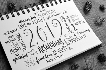 2019 RESOLUTIONS brush calligraphy in notebook