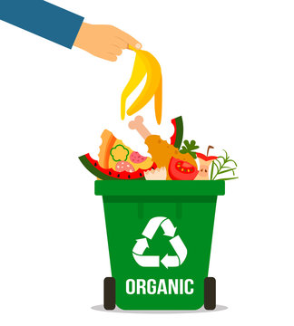 the hand of man throwing garbage into organic container. concept of garbage processing. Vector illustration in a flat style on a white background