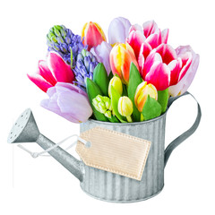 Tulpen und Dekoration