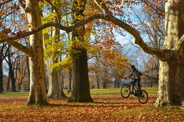 Junge fährt Mountainbike im Park unter riesigen alten Platanen und Eichen