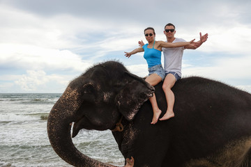 Portrait of a happy young couple on an elephant on the background of a tropical ocean. Tropical coast of Sri Lanka