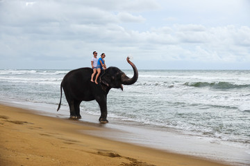 Young couple is riding on an elephant with trunk up on the background of a tropical ocean beach. Tropical coast of Sri Lanka