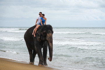 Young couple is riding on an elephant on the background of a tropical ocean beach. Tropical coast of Sri Lanka