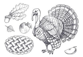Bird Turkey and Baked Pie Apple Set Icons Vector