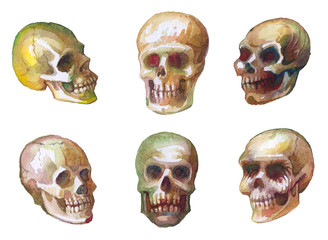 Watercolor sketches of skulls. Drawing paint on paper. Seamless woven pattern. Design print for textile, fabric, wallpaper, background. Can be used for printing on paper, packaging.