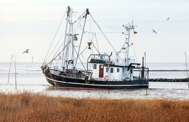Krabbenkutter an der Nordseeküste auf dem Weg zum Krabbenfang, Küstenfischerei von Granat in Norddeutschland