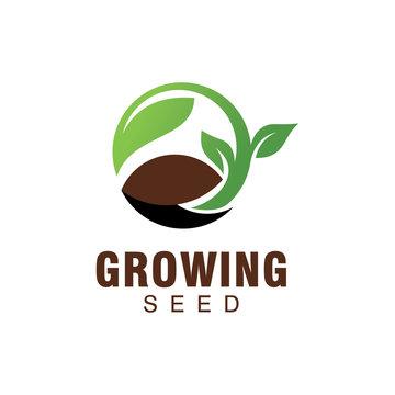 growing seed logo
