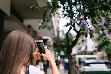 Young girl is photographing a Hibiscus syrian  on the phone.