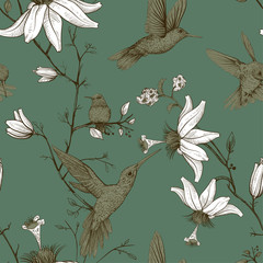 Fotobehang Botanisch Vector sketch pattern with birds and flowers. Monochrome flower design for web, wrapping paper, phone cover, textile, fabric, postcard