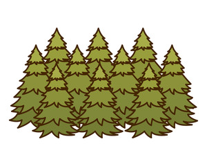 pine trees isolated icon