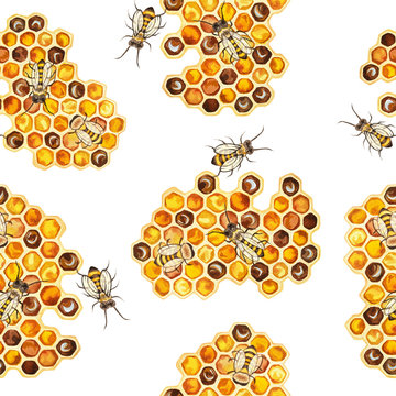 Illustration of watercolor hand drawn colorful Honeycombs in the shape of hexagon, Spring pattern. Realistic honeybee gather fresh healthy organic mead. Seasonal natural scene, meadow, organic.