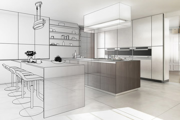 Contemporary Designed Kitchen (development)