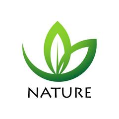 zielony liść logo wektor