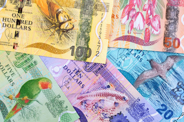 Fijian money, a business background