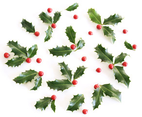 Christmas holly Ilex aquifolium isolated on white table background. Evergreen leaves with red berries. Decorative floral frame, web banner. Flat lay, top view.