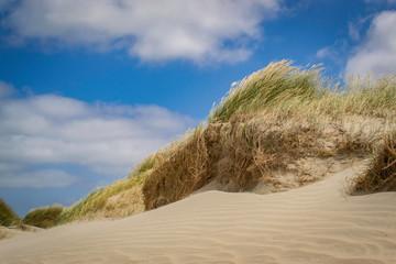 West coast dunes