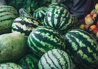 Pile of raw watermelons in the market