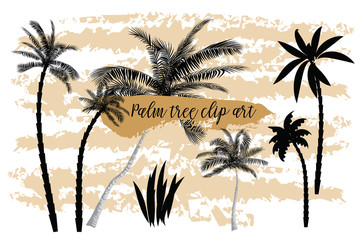Collection of realistic black silhouettes, isolated tropical palms, branches and individual leaves on a white background. Vector illustration