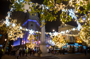 Scenic nighttime view of twinkling Christmas lights strung through trees surrounding the historic Seven Dials monument in London, England, UK