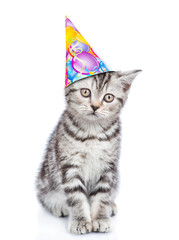 Cute kitten in birthday hat. isolated on white background