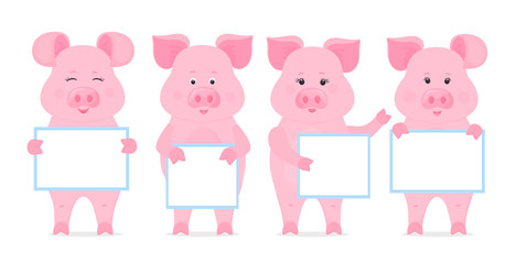 Pigs are holding blank sign, clean poster, empty poster, banner. Funny piglets.