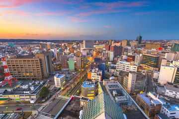 Toyama, Japan Downtown City Skyline