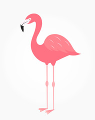 Cute flamingo bird isolated on white icon