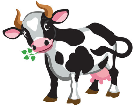 cartoon black cow . Isolated vector illustration