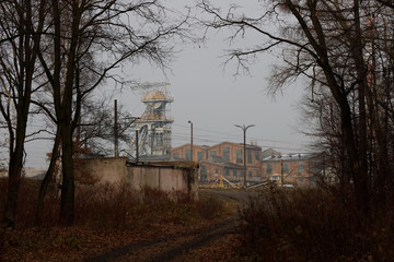 The Wider Image: Farewell to coal: a Polish city wakes up and smells the blossom