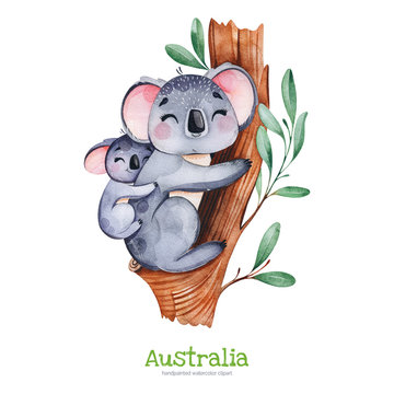 Australia watercolor set.Cute koala with baby on eucalyptus tree.Watercolor  animals.Perfect for wallpaper,print,packaging,invitations,Baby shower,patterns,travel,logos etc