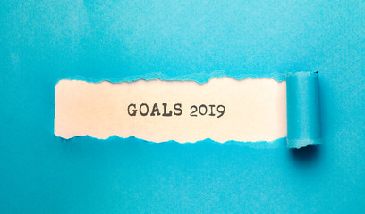 torn paper with goals 2019  text