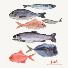 Lamas personalizadas para cocina con tu foto Set of seafood hand drawn illustrations