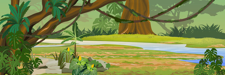 River in the jungle. A tropical forest. Rainforests of Amazonia. Tree, epiphytic ferns, creepers, banana trees and monsteras. Realistic Vector Landscape