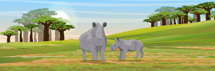Family of African rhinos. Mother and her cub.Wild animals of Africa. African savannah. Hill and valley. Grass, baobab grove. Realistic vector landscape.