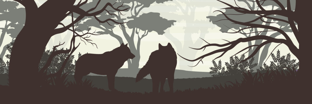 Silhouette. A pack of two wolves in a dense forest. Wildlife of Europe, USA and Canada. Realistic Vector Landscape