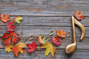 Maples leaves with music notes on wooden background