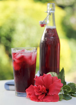 HIBISCUS OR ROSELLE JUICE